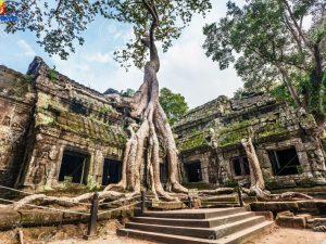 amazing-cambodia-tour-8-days7