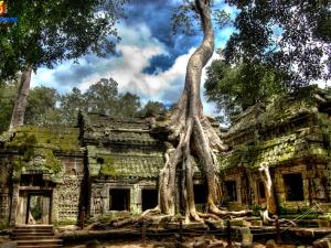 cambodia-timeless-charm-tour-9-days