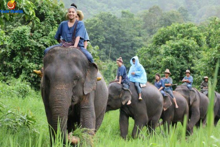 essential-thailand-tour-7-days14