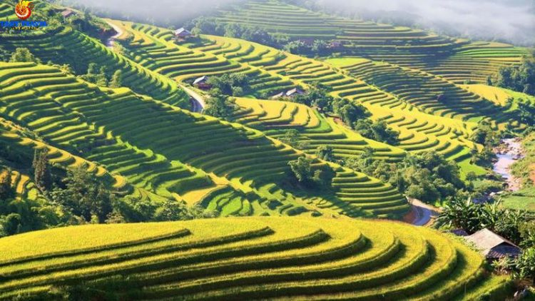 north-east-vietnam-discovery-tour-10-days12