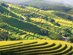vietnam-tour-from-mountain-to-sea-10-days16
