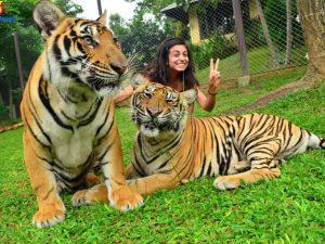 amazing-northern-thailand-tour-6-days21